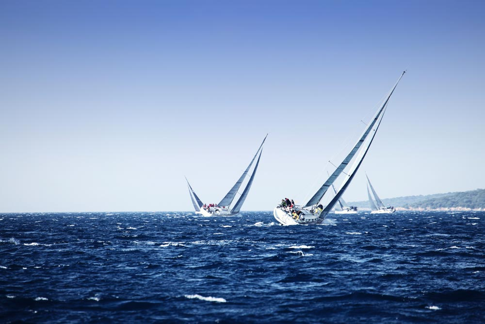 Sail racing Los Anegeles